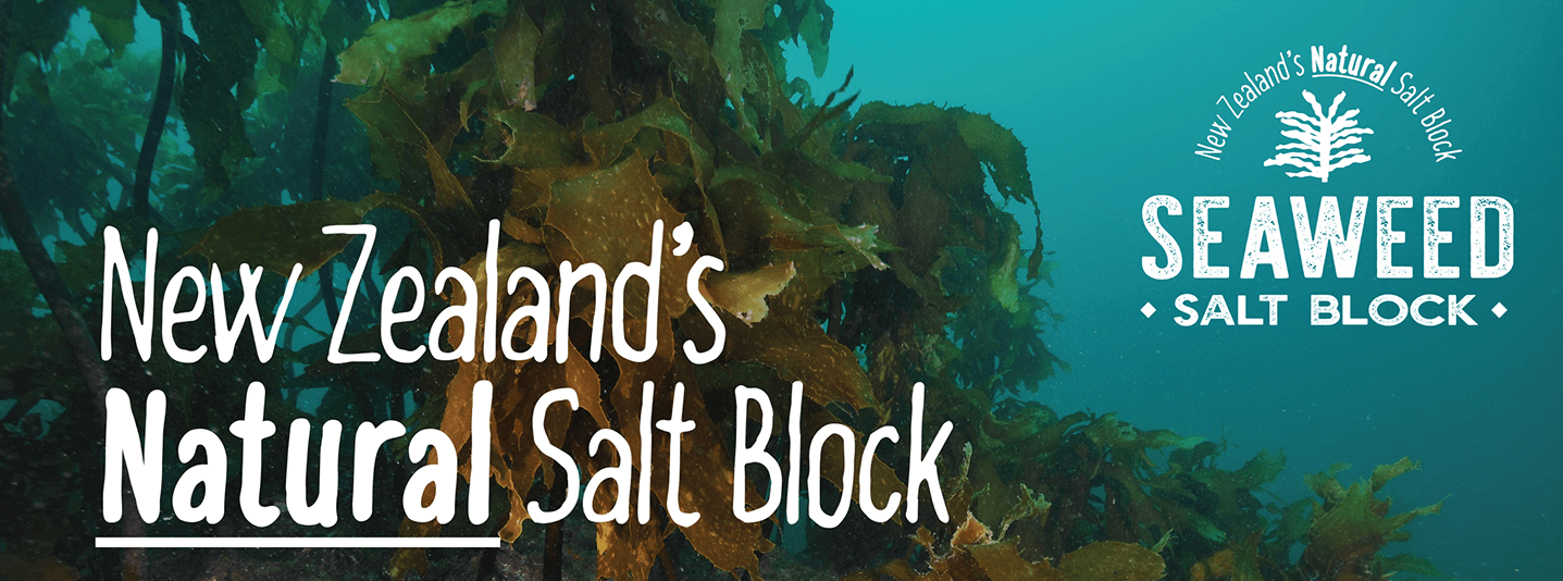 Two New Salt Block Products